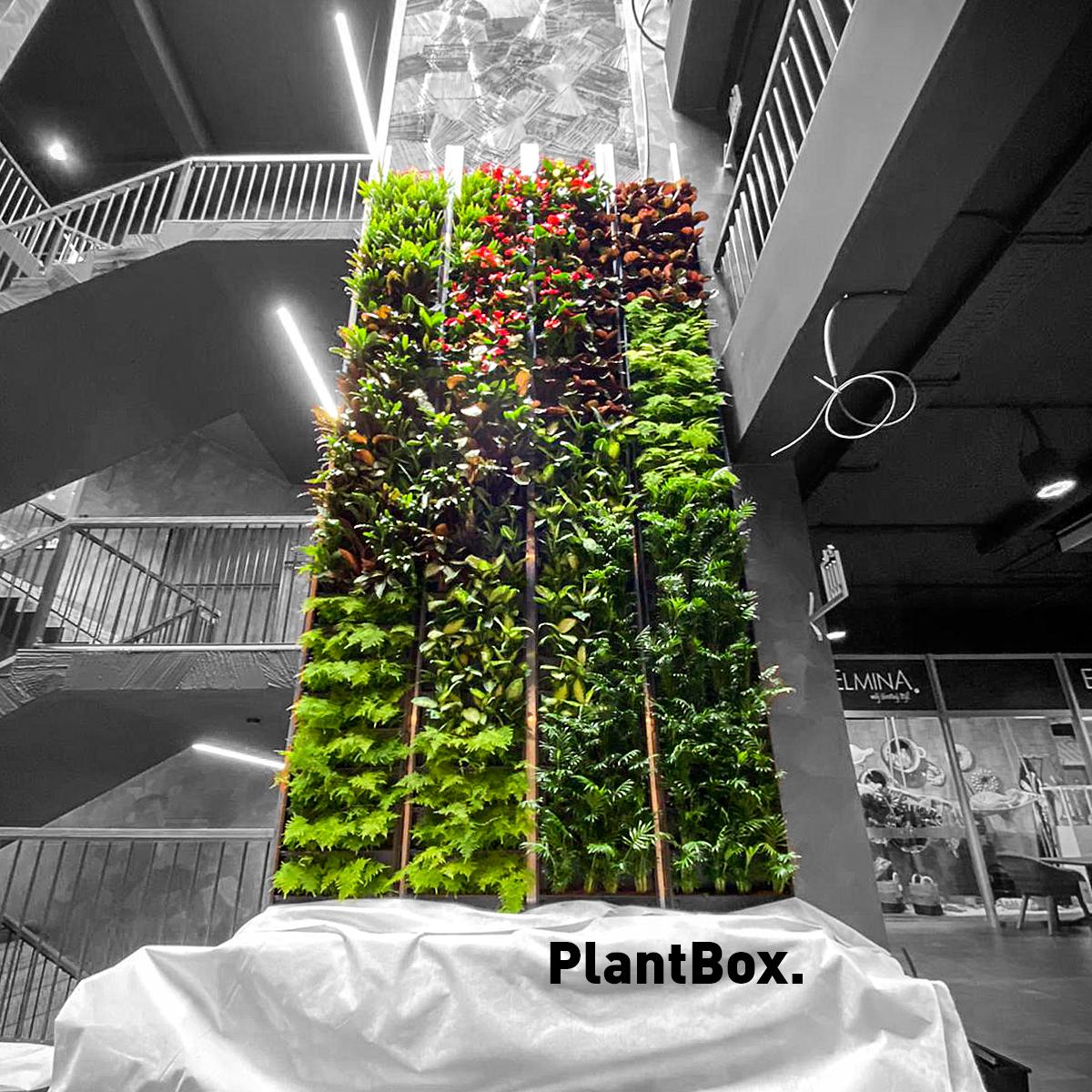 Jak se staví 13 metrů vysoká zelená stěna?