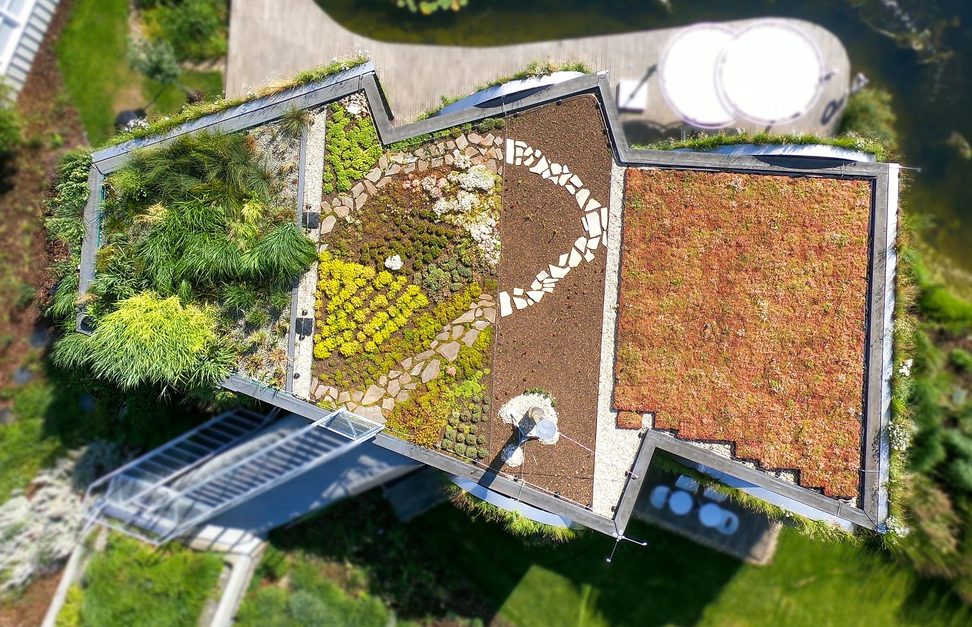 Zelené střechy zlepšují prostředí měst