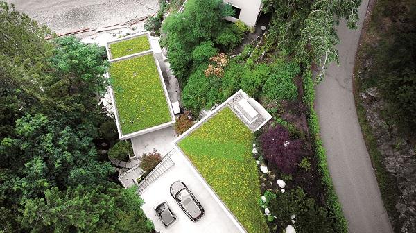 Zelené střechy osvěžují města