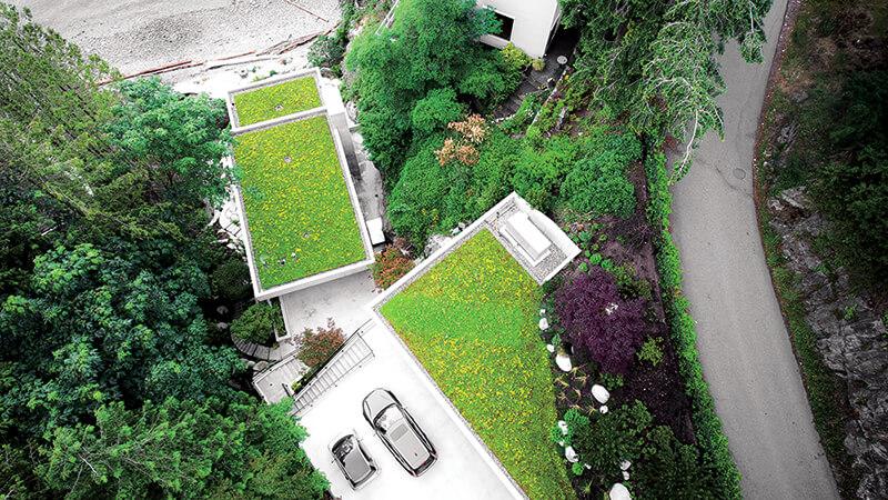 Brno podporuje zelené střechy. Jak dosáhnout na dotace?