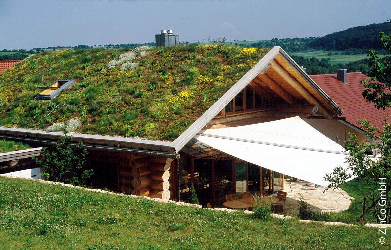 Zelená střecha - možnosti pokrytí střechy