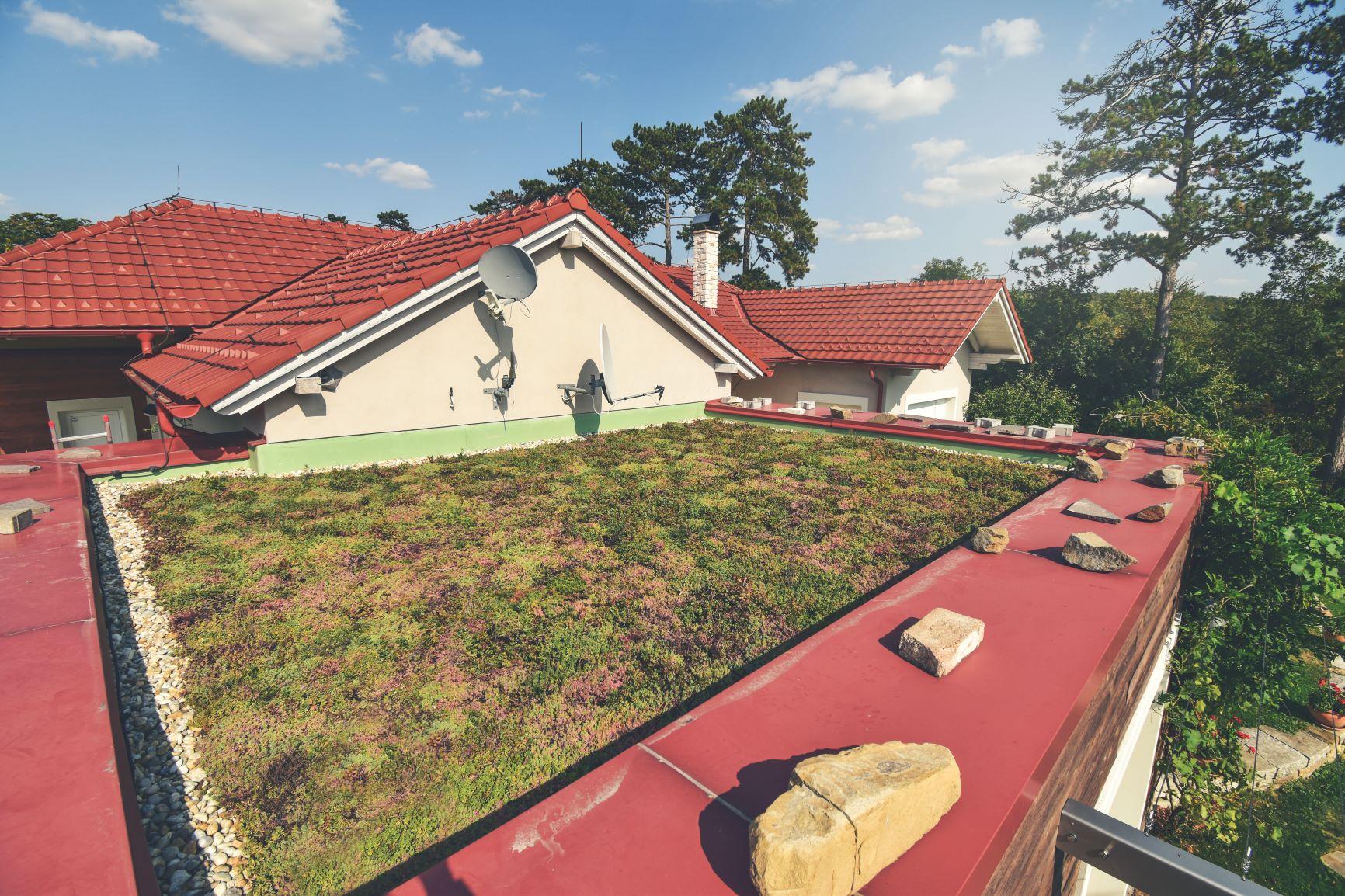 Hlavní přednost zelené střechy?!